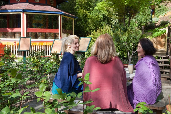 Image of students in the Meditation Garden.